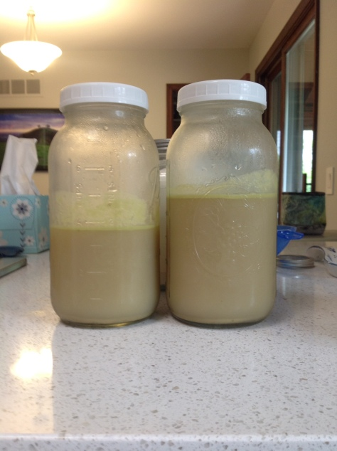 My cooled and jarred chicken broth, full of healthy gelatin!